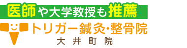「トリガー鍼灸・整骨院」大井町で口コミ評価NO.1 ロゴ